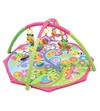 Gimnasio Bugs 'n' Bloom Activity Gym Playgro