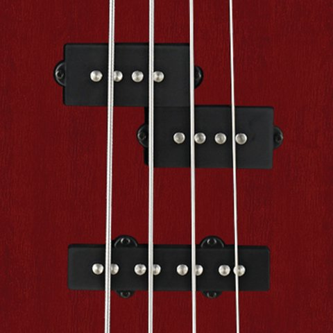 Bajo Cort Action Pj Open Pore Black Cherry