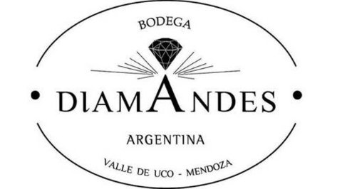 DiamAndes Malbec x750ml en internet