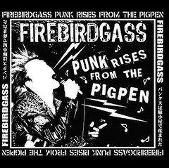 FIREBIRDGASS - punk rises from the pigpen - LP