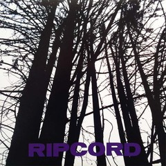 RIPCORD - from demo slaves to radiowaves - LP