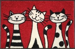 Tapete Capacho Wash+Dry Design Three Cats