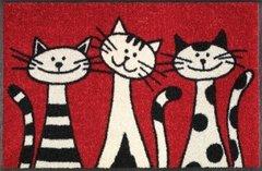 Capacho lava e seca Wash+Dry - Three Cats