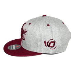 Gorra Snapback Kings en internet