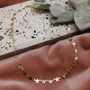 Collar New star