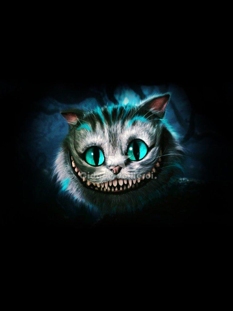 camiseta gato de cheshire alice no pa u00eds das maravilhas bob marley legond bob marley looking at your