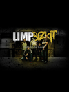 Camiseta The band - Limp Bizkit - comprar online