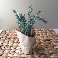 Maceta craff. Planta Rosemary. Deco.CDC51