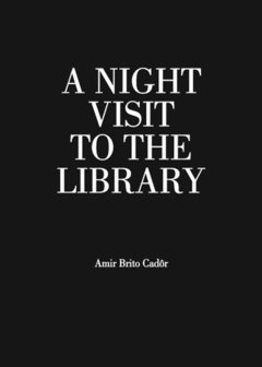 A Night Visit to the Library
