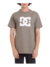 Camiseta DC Shoes Star Verde