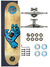 Skate Santa Cruz Completo 7.75 Screaming Hand Wood