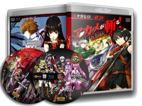 Akame ga KILL! dvd cover