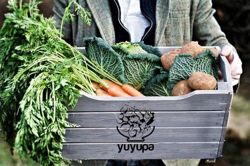 Bolsón de Verduras Agroecológicas - Delivery a domicilio