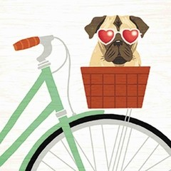 Beach Bums Pug Bicycle I en internet