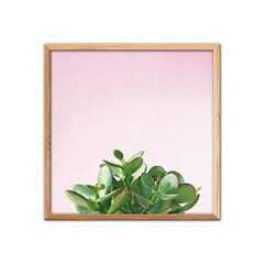 Succulent Simplicity on Pink V