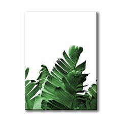 Banana Leaves I - comprar online