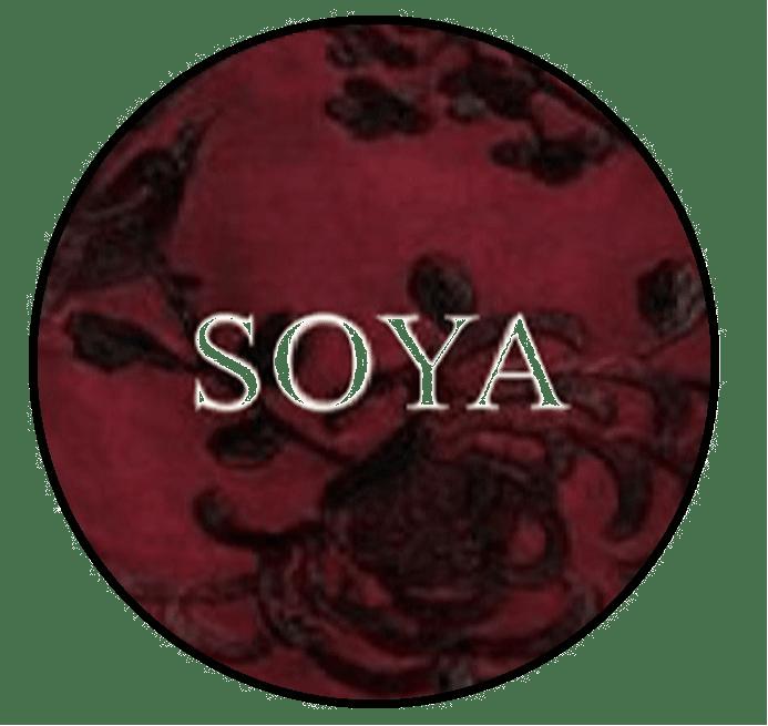 412f0b236 Tienda Online de Soya