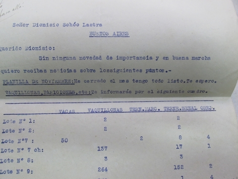 Documentos Antiguos de Estancia. Fojas y recibos de Antonio Piñero 1918 en internet