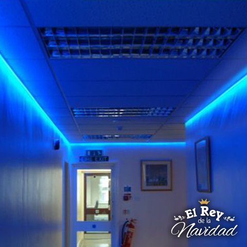 Cinta Led Azul 5050 5mts con transformador en internet