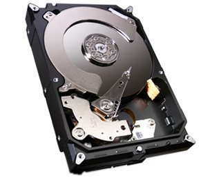 HD Interno Seagate 1TB SATA 600MB/s 7200rpm 64MB 3,5 HD Interno (ST1000DM003 -1TB)