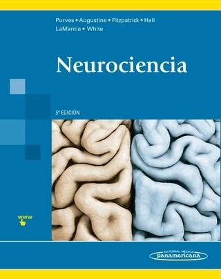 Neurociencia 5° Ed - Purves