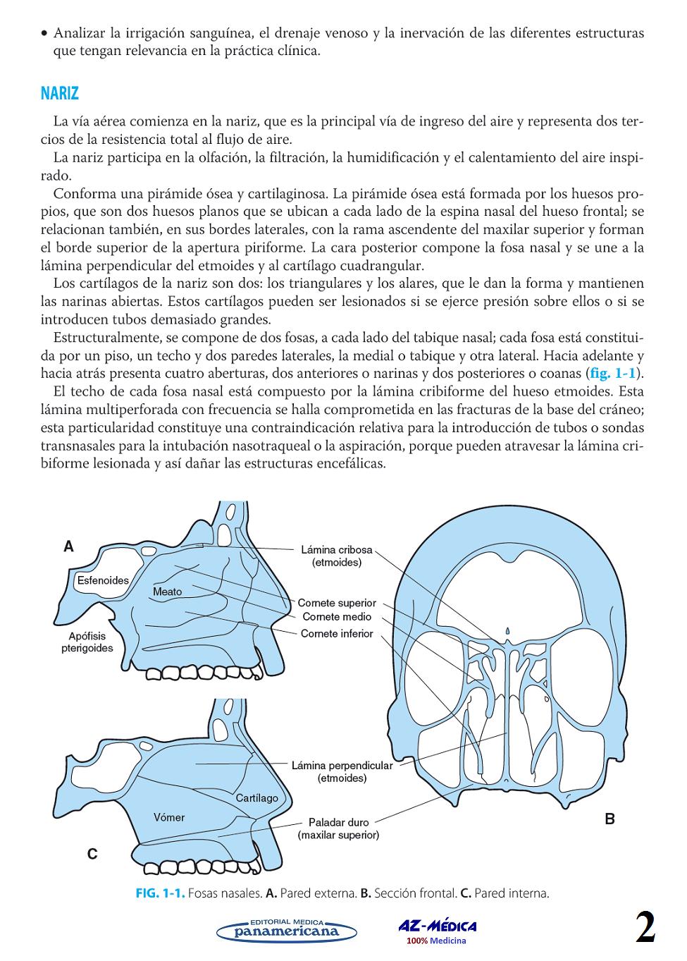 Libreria AZ-Médica - Anatomía de la Vía Aérea