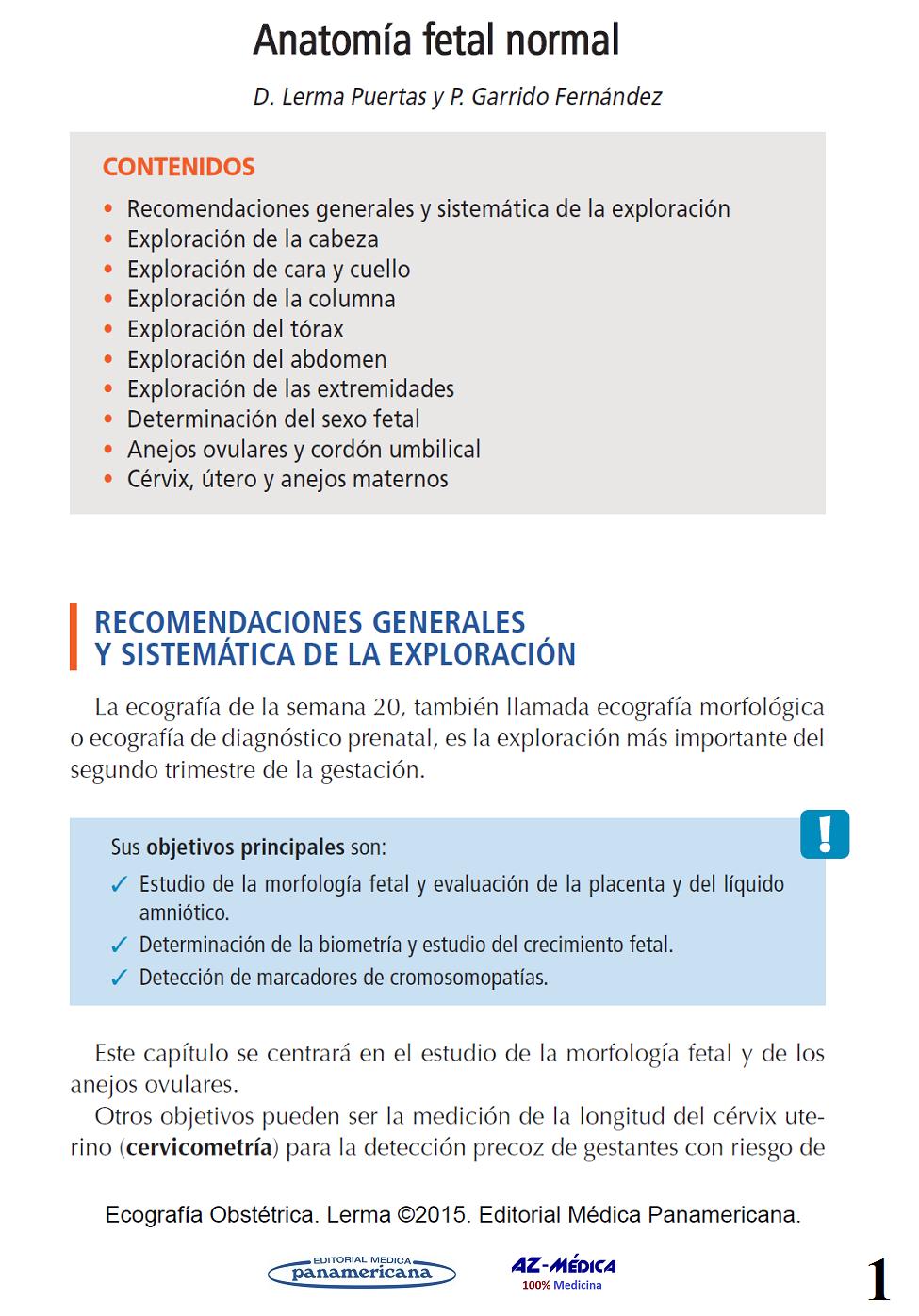 Único 20 Semanas De Exploración Anatomía Fetal Regalo - Anatomía de ...