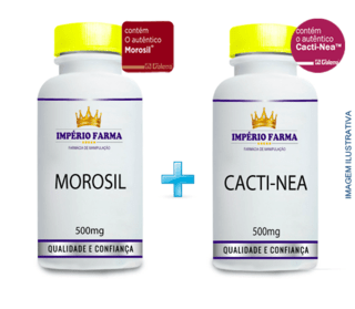 Kit Morosil + Cactinea
