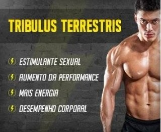 Tribulus Terrestris 625mg