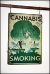 DR-069 cannabis smoking - comprar online