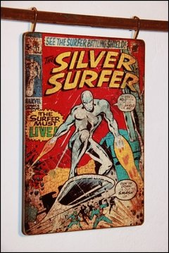 HR-013 Silver surfer