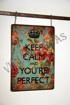 ZR-096 YOU ARE PERFECT - comprar online