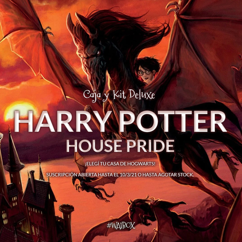 Kit Deluxe Harry Potter - House Pride