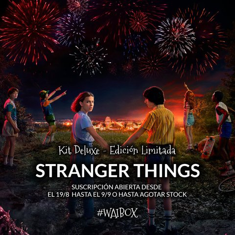 Kit Deluxe Stranger Things