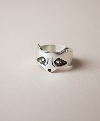 Raccoon Ring on internet