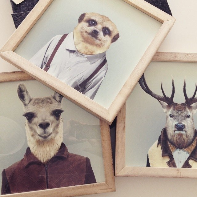 CUADRITOS HIPSTER ANIMALES