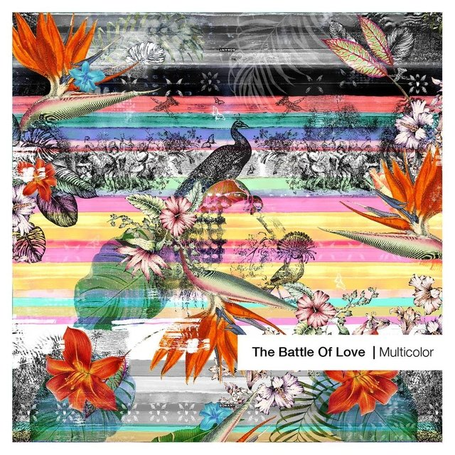 The Battle of Love Multicolor Large