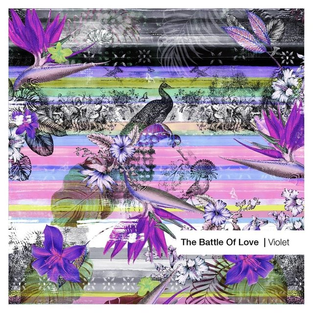 The Battle of Love Violet Large
