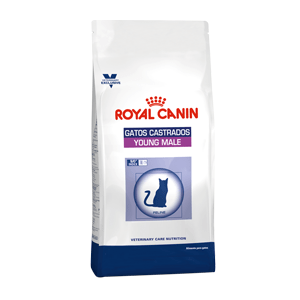 ROYAL CANIN GATOS CASTRADOS YOUNG MALE X 3.5 KG