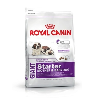 ROYAL CANIN GIANT STARTER X 10 KG