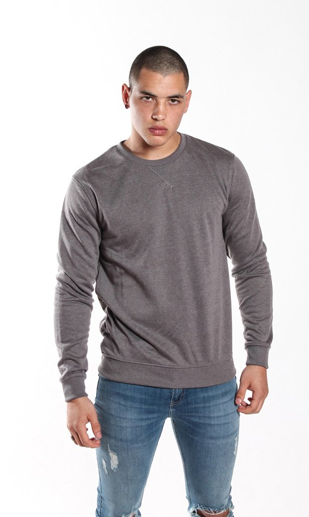 Thin sweatshirt - Grey