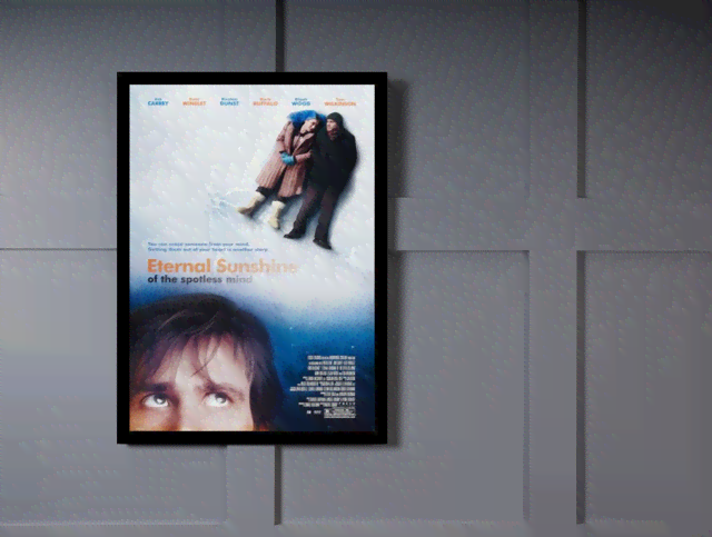 Quadro Poster Cinema Filme Eternal Sunshine na internet