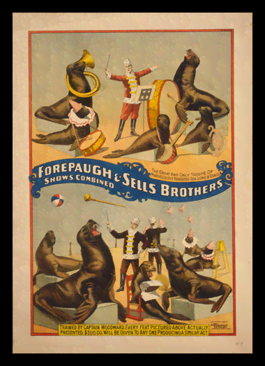 Quadro Poster Cinema Forepaugh e Sells Brothers