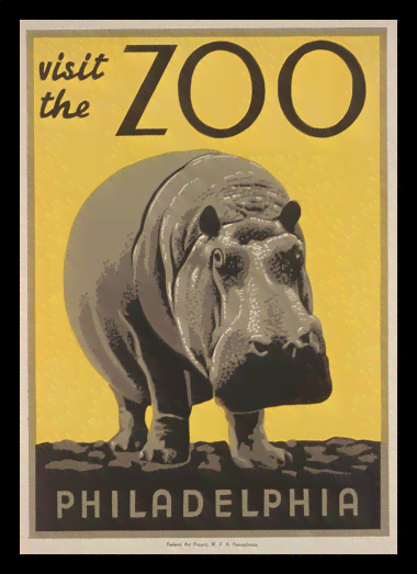 Quadro Poster Natureza Visit the Zoo Philadelphia