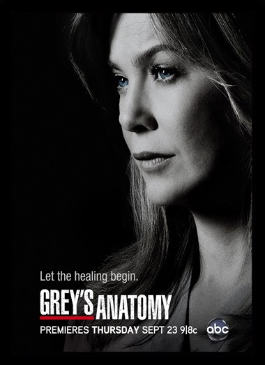 Quadro Poster Series Greys Anatomy 2