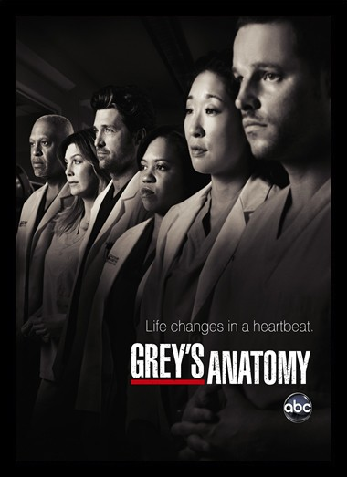 Quadro Poster Series Greys Anatomy 4