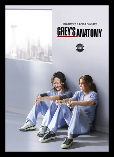 Quadro Poster Series Greys Anatomy 6
