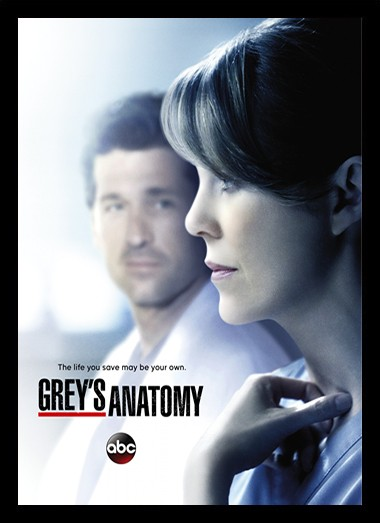 Quadro Poster Series Greys Anatomy 7