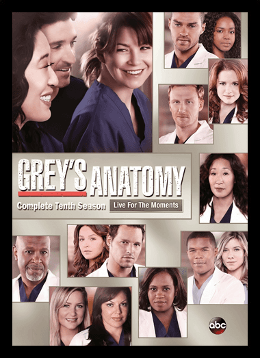 Quadro Poster Series Greys Anatomy 8