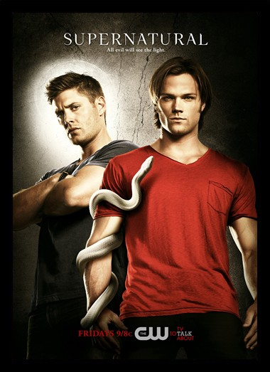 Quadro Poster Series Supernatural 24